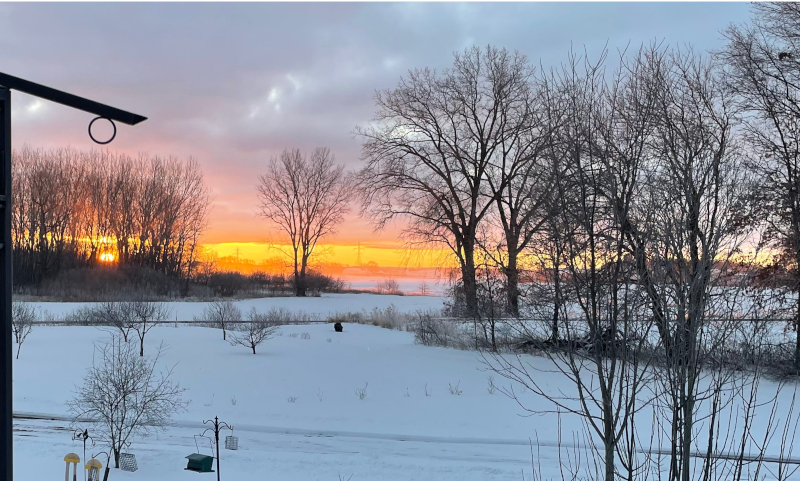 Picture of Winter sunrise